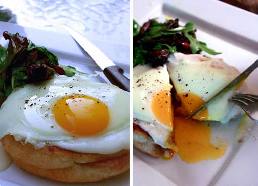 Post image for Temptress! Croque Madame!